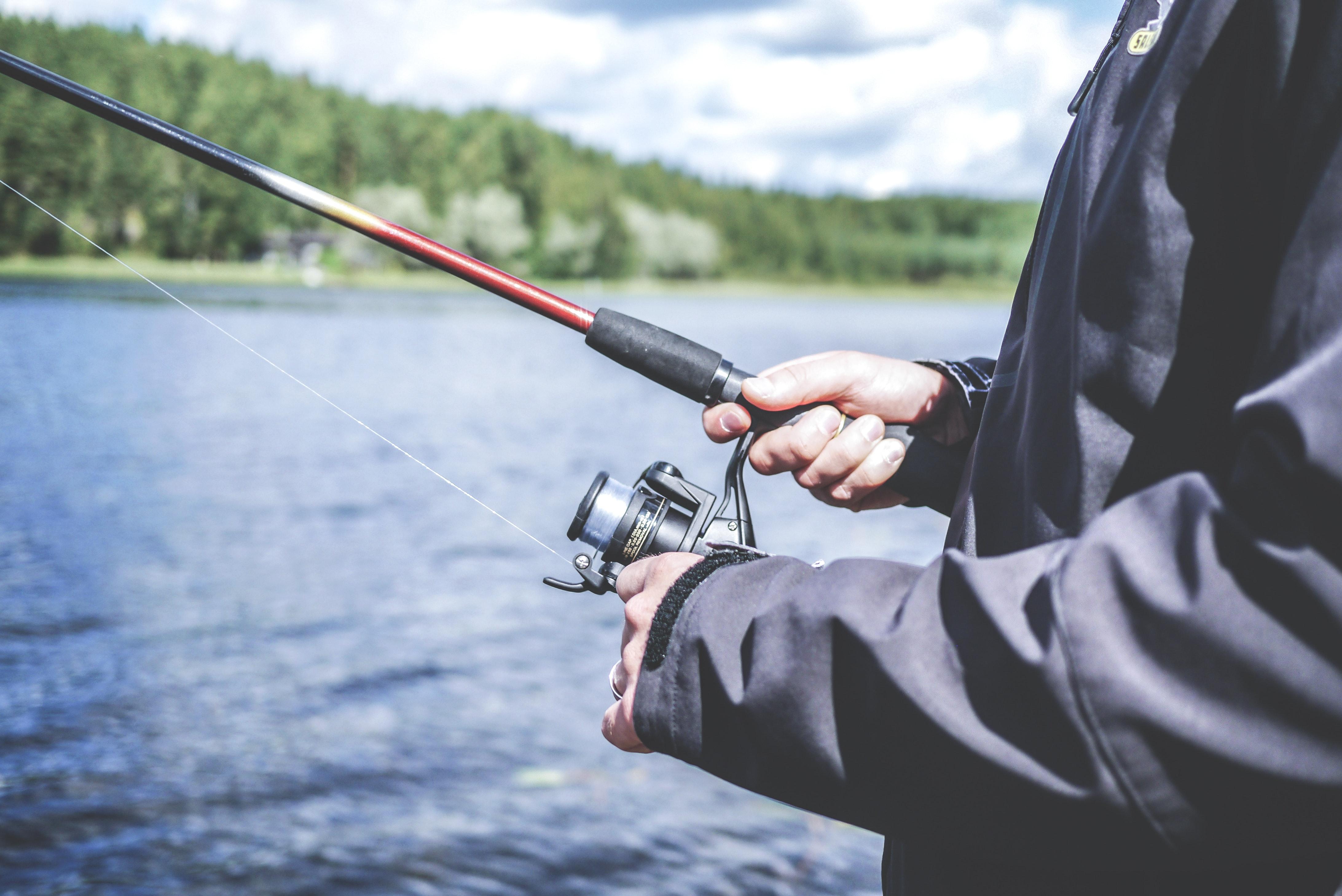Fiske Gädda Välmående